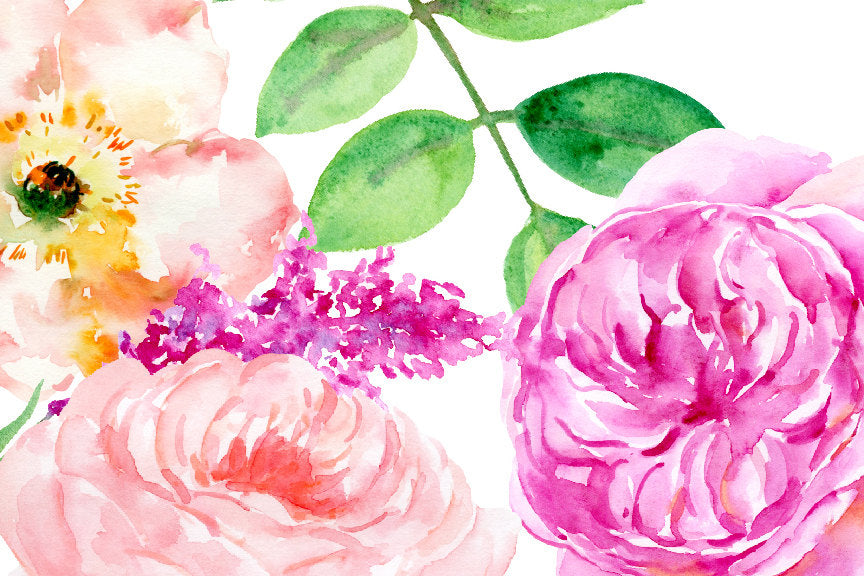 watercolour clip art sensational, pink rose, yellow rose, roses clipart, corner croft
