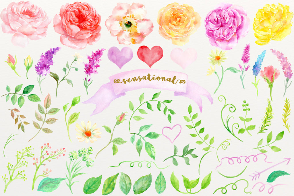 watercolor illustration of cottage rose, clipart sensational, pink rose, yellow rose, red rose, corner croft rose
