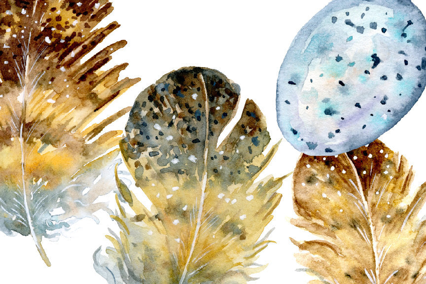Watercolor illustration of owl feathers, eggs and nest, watercolor feather illustration, botanical painting