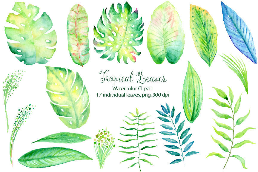 Watercolor tropical collection, exotic tropical flowers, lush foliages and beautiful humming birds