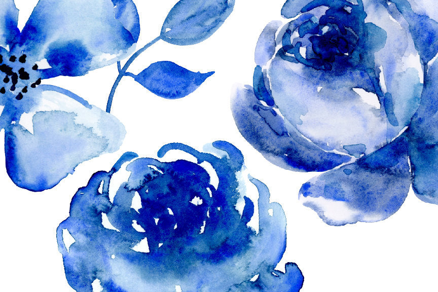 watercolor clipart indigo, dark blue rose, daisy and floral element, instant download