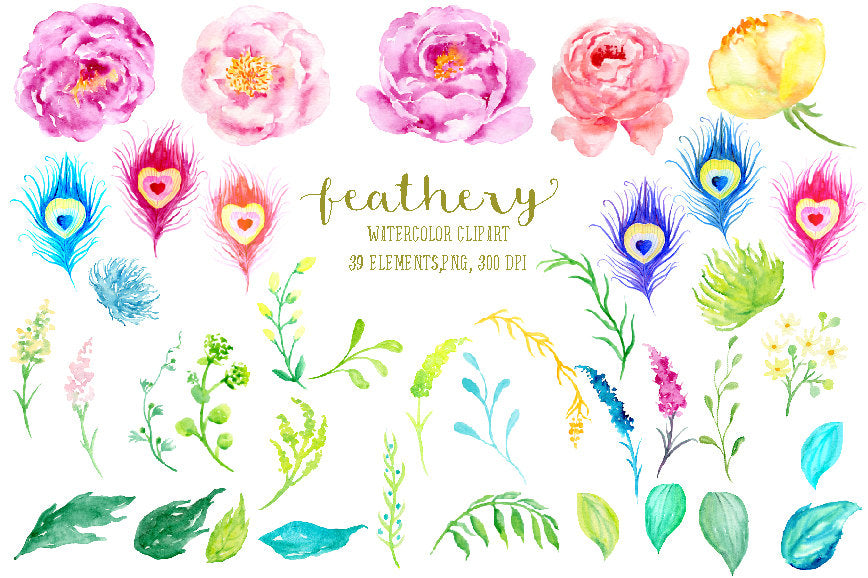 Watercolor collection feathery, pink and purple peony, peacock feather, boho pony, bohemian clipart