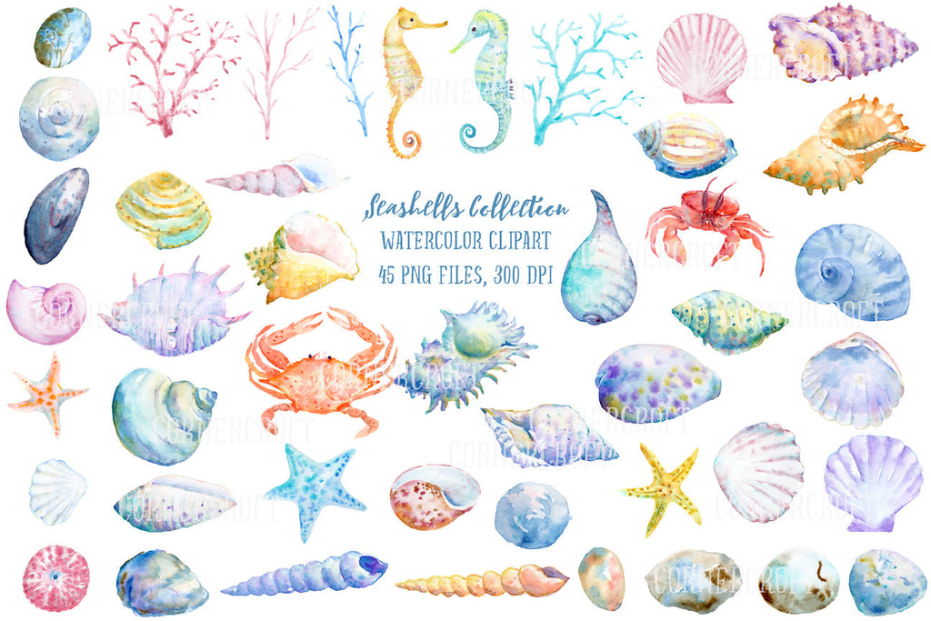watercolor clipart, watercolor seashells, crabs, star fish, seahorse, coral, pebbles
