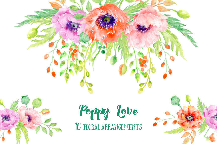 Watercolor poppy love floral arrangements, poppy compositions, poppy illustration