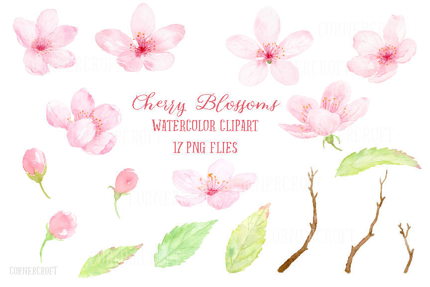 Watercolour elements of pink cherry flowers, branches and leaves.