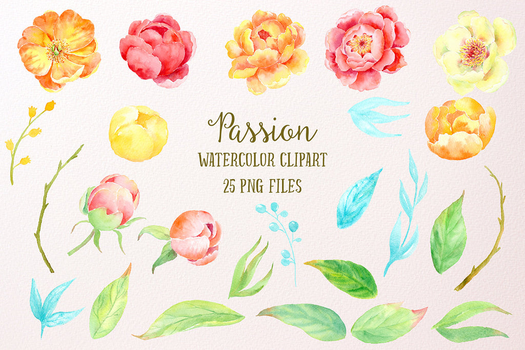 watercolour peony, passion, orange peony, peony illustration