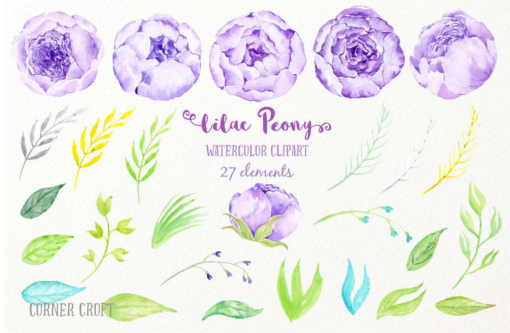 watercolor clipart lilac peony, peones, peony illustration, instant download