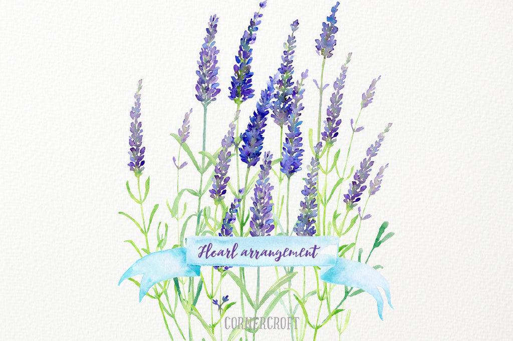 sprig of lavender, slander stem of lavenders in blue and purple color