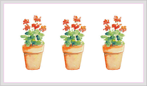 watercolor pot plants, garden plants, gardening graphics, corner croft watercolour illustration