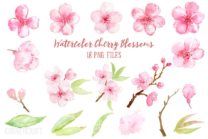 Watercolor Clipart cherry blossoms, pink flowers, spring flowers, digital download