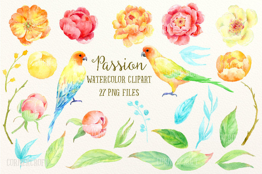watercolor yellow peony, orange peony, wedding peony, wedding invitations, greeting cards, birds,