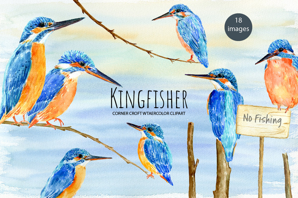 watercolor kingfisher clipart, detailed illustration of birds, kingfishers print