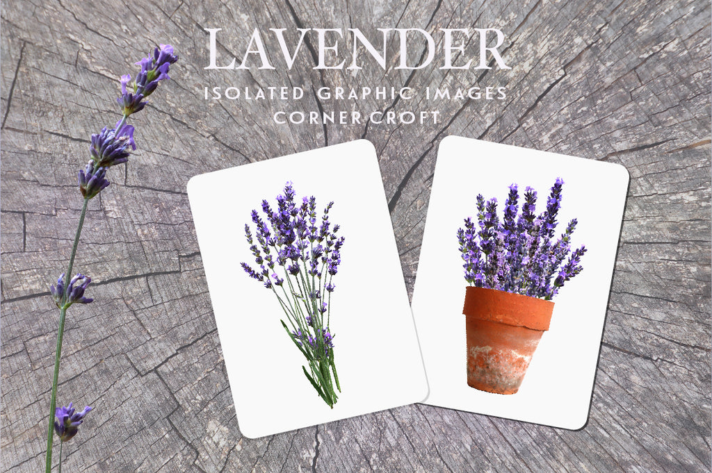 lavender clipart, for wedding invitation, fabric print, branding and labelling
