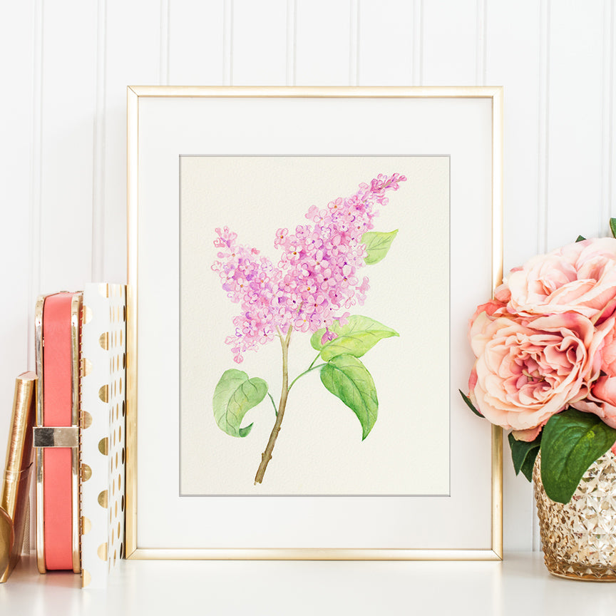 watercolor pink lilac illustration, botanical painting of lilac, corner croft print