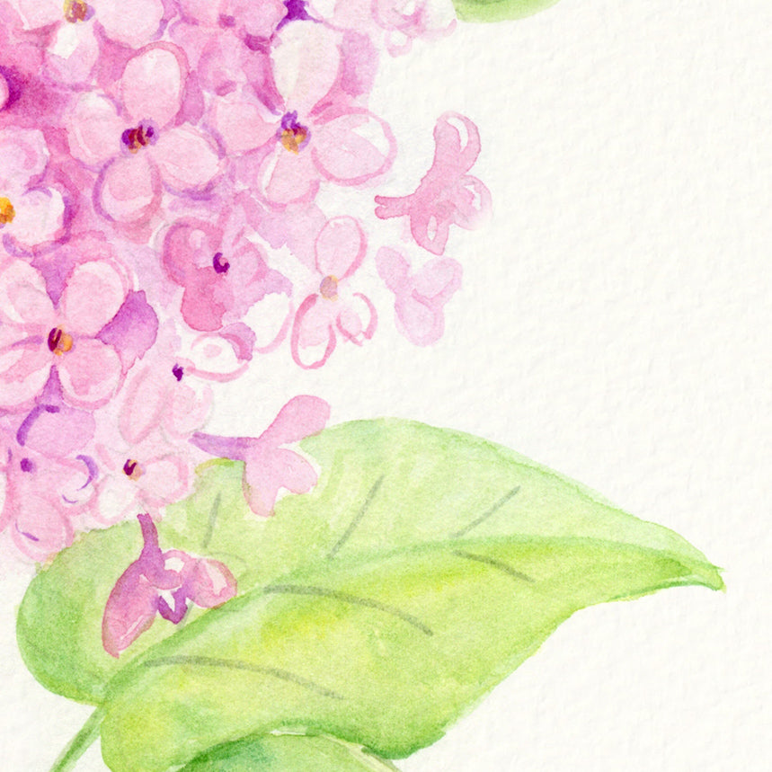 watercolor pink flower, pink lilac flower, instant download