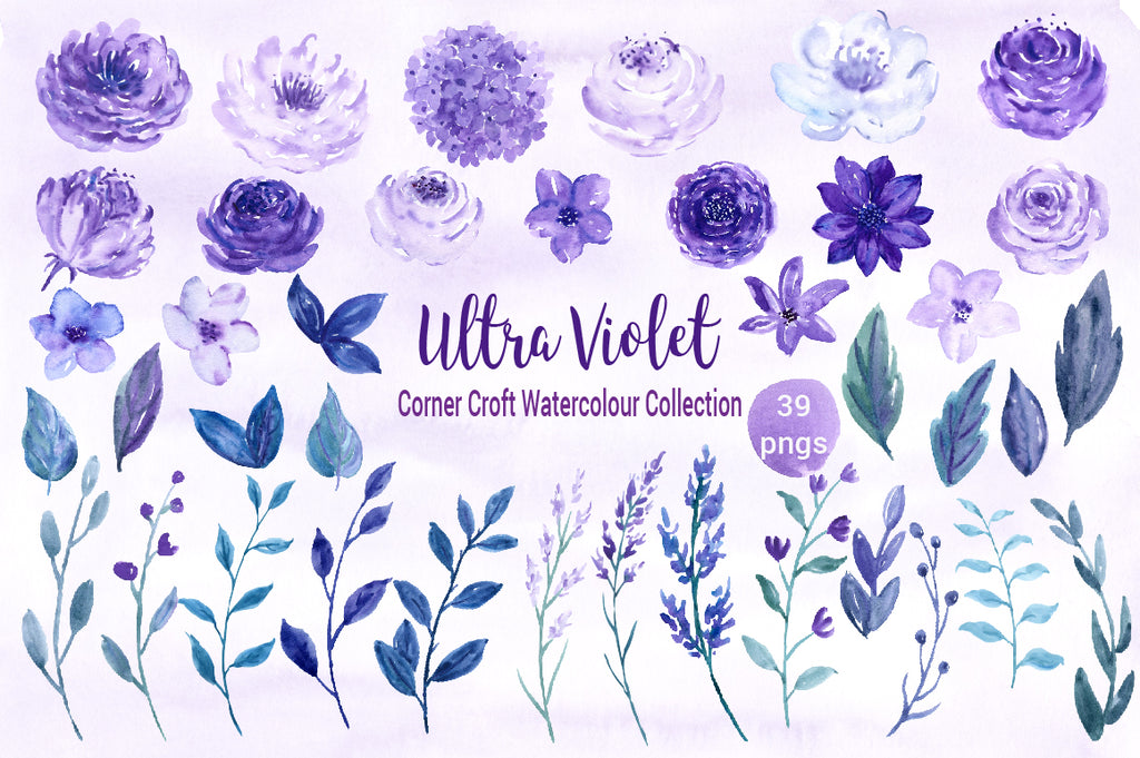 watercolor purple and lavender floral elements, rose, peony, watercolour illustration