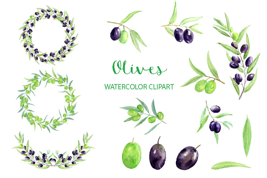 hand painted olive clipart, olive branch, olive garland, instant download