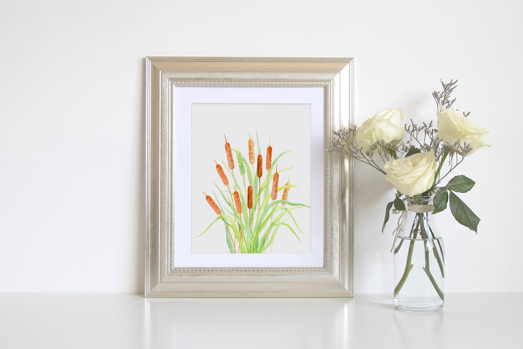 Watercolor print of Bulrush, botanical print of cattail, typha, wall art