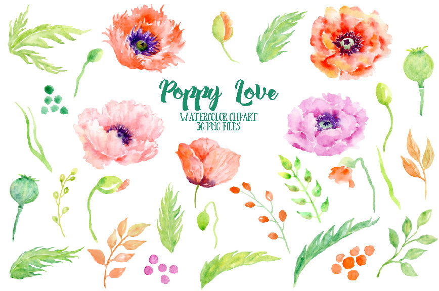 watercolour clipart Poppy Love, pink, red and orange poppy illustration, corner croft illustration
