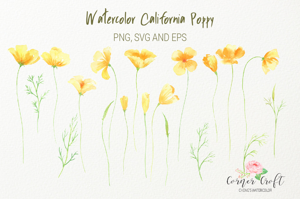 watercolor california poppy, yellow flowers, silhouette poppy, vector , eps, svg