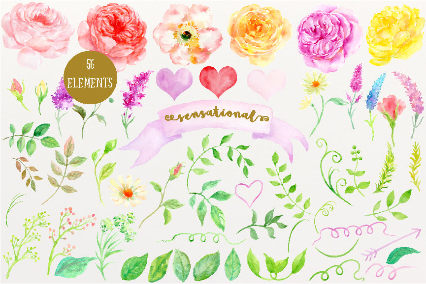 watercolour clipart sensational, pink rose, yellow rose, floral clip art, corner croft art