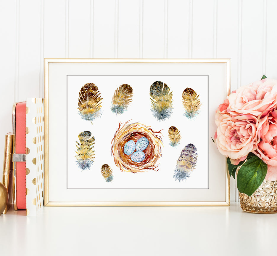 Owl feathers, eggs and nest print, watercolor detailed illustration, digital download