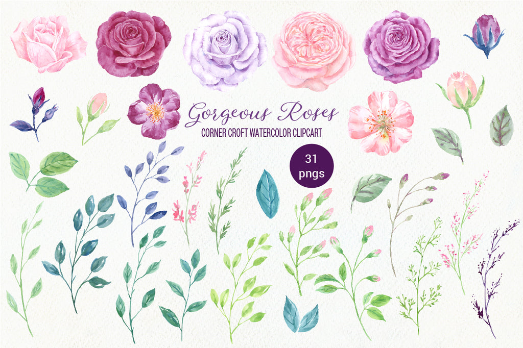 watercolor rose clipart, rose illustration, pink rose, purple rose, peach rose