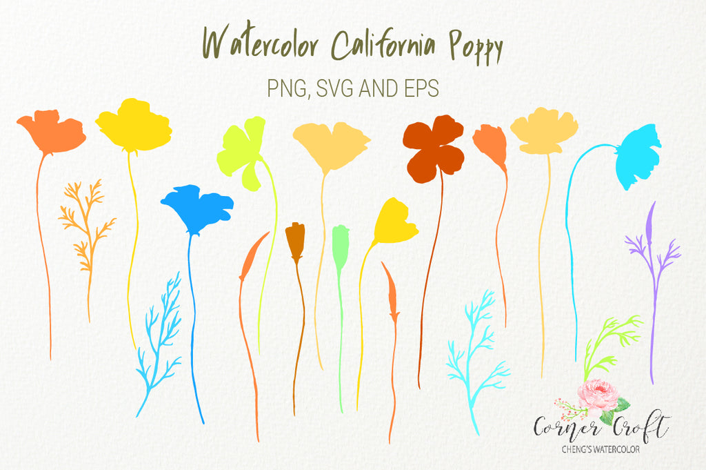 vector image of California poppy, poppy illustration