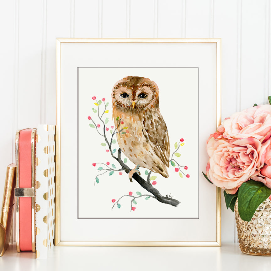 watercolor illustration little brawn owl, bird illustration, watercolor painting, nature