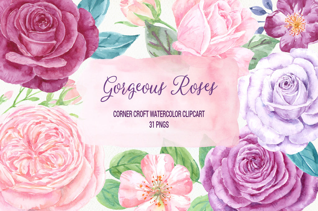 watercolour rose clipart, pink rose, purple rose, plummy rose