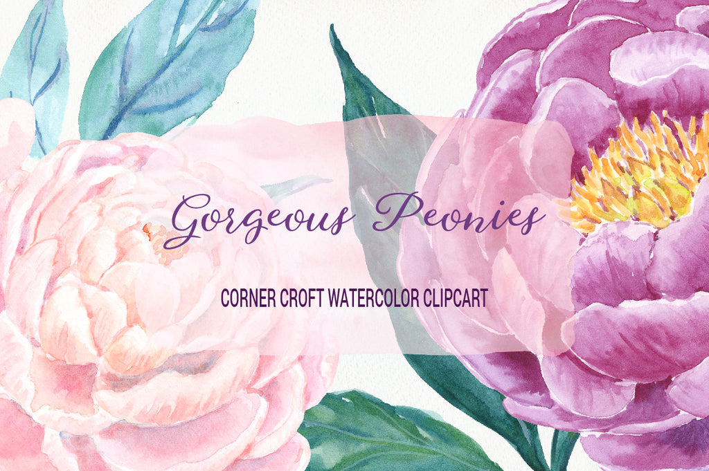 watercolor clipart, gorgeous peonies, peony, hand painted, pink, purple, red, plummy, instant download