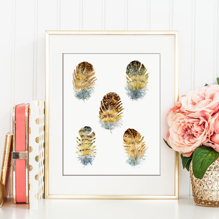Watercolor owl feather illustration, botanical illustration