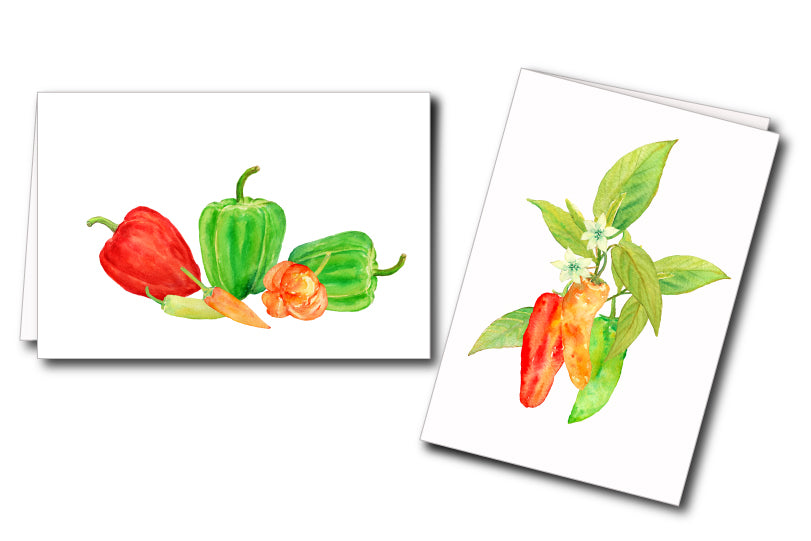 watercolour chilli graphics for instant download