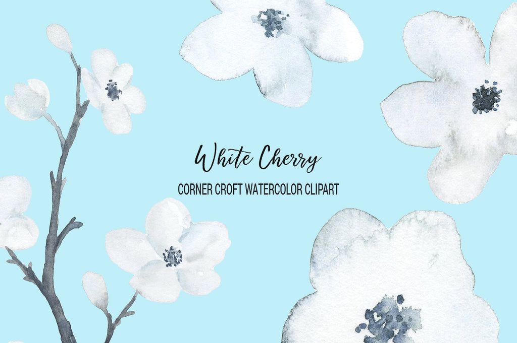 corner croft watercolour clip art, white cherry blossom, white cherry blossoms.