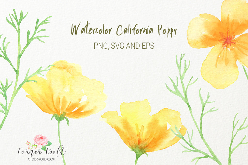 watercolor yellow flowers, California poppy