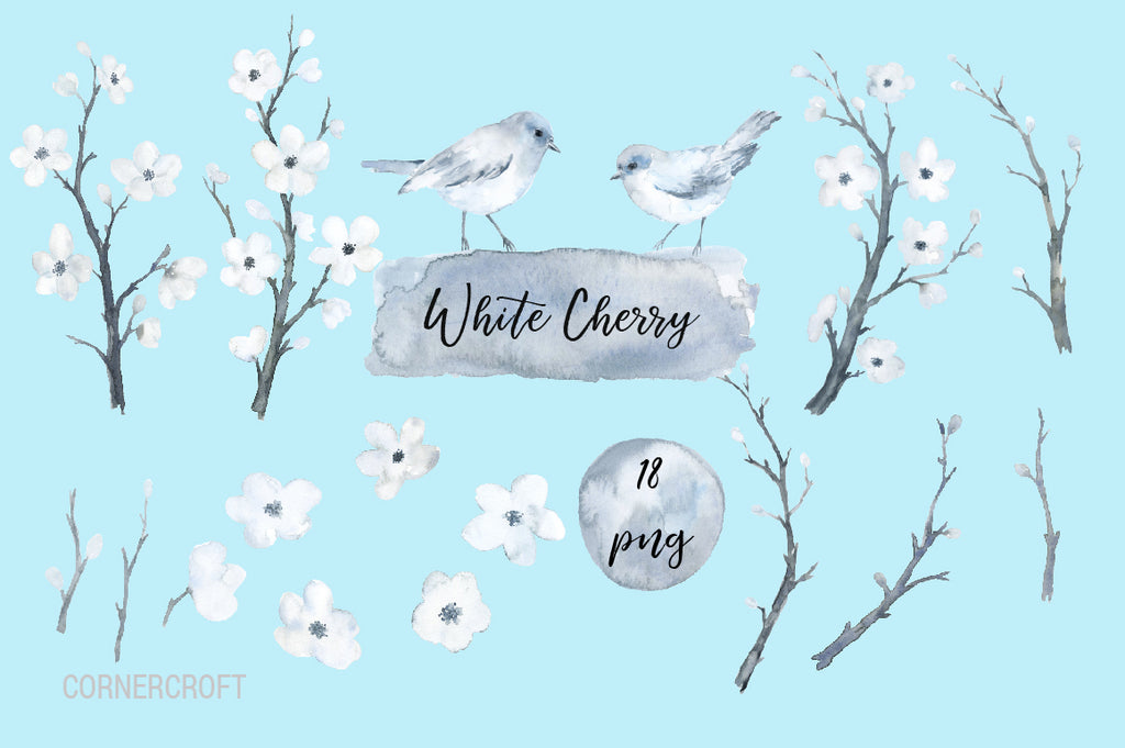 watercolor cherry blossoms, cherry flower, clipart, floral clipart, spring flower.