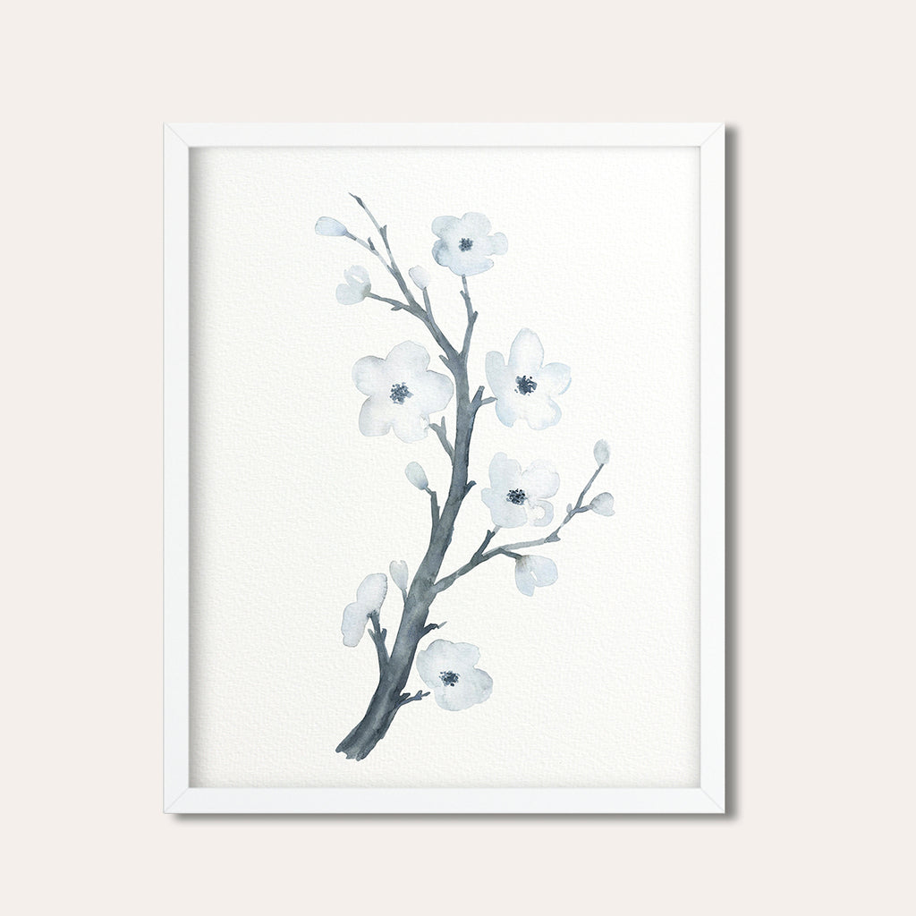 Watercolor illustration white cherry flower, cherry blossoms, spring flowers, printable