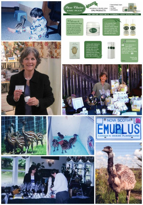 Collage of our business' journey through the years - includes photos of emu on the farm, our first website, and early market photos.