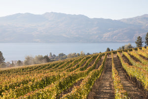 Okanagan Harvest - West Kelowna