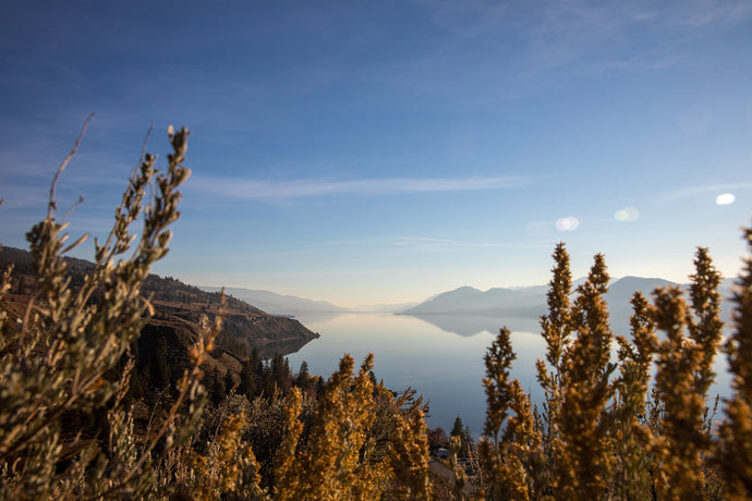 Southside of Okanagan Lake