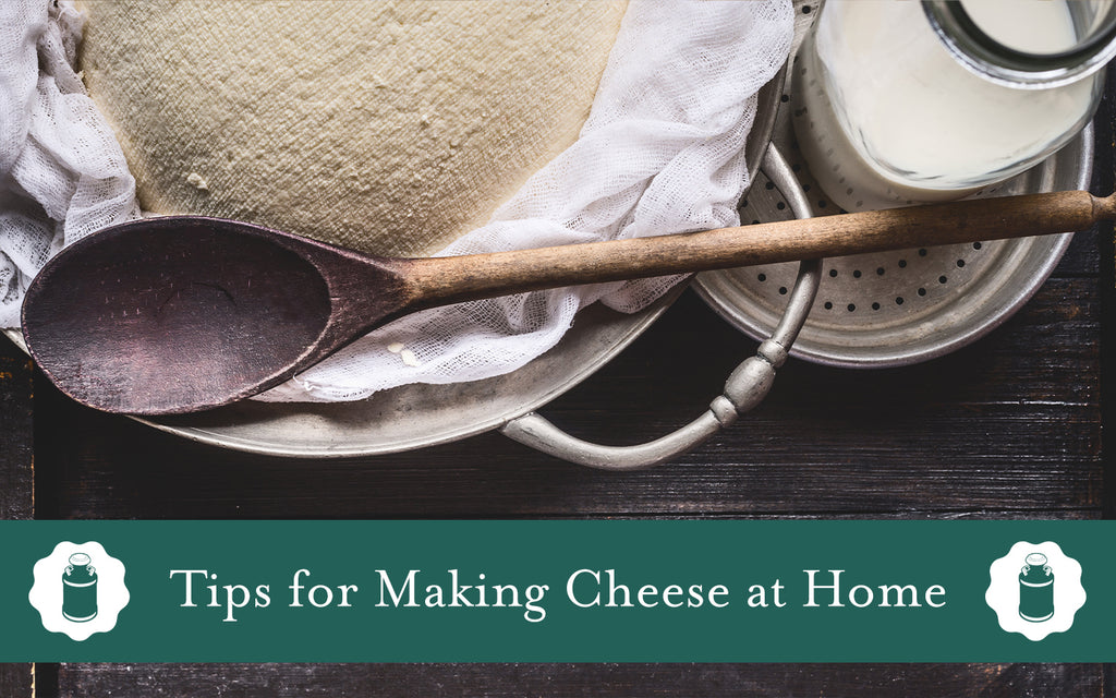 Making Cheese at Home