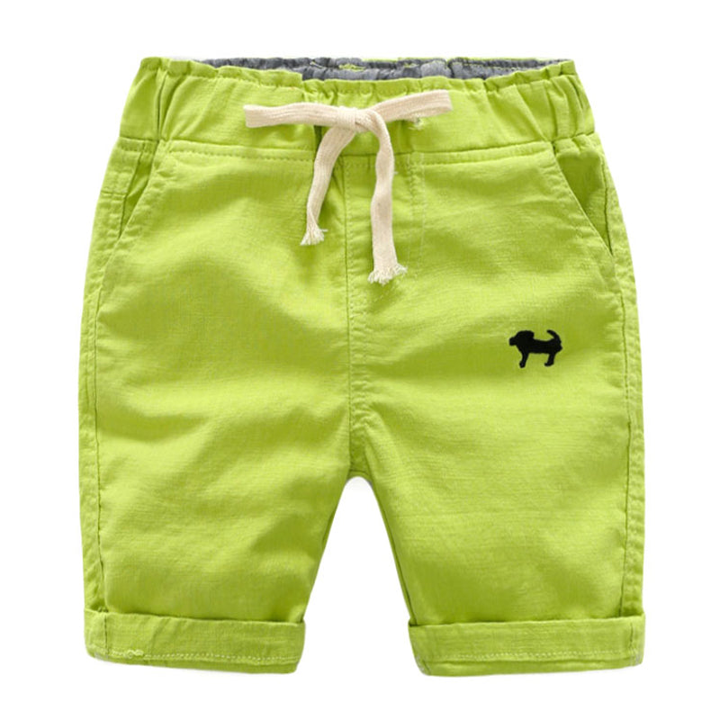 Quick Dry Beach and Surf Shorts (2T-6T)