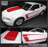 2005 2006 2007 2008 2009 2010 2011 2012 2013 2014 2015 2016 2017 Ford Mustang hood  side  door  rocker panel Decals Stripes 122551579925-1