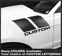 2005 2006 2007 2008 2009 2010 2011 2012 2013 2014 2015 2016 2017 2018 2019 Ford Mustang side Decals Stripes 152588457497-1