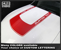2005 2006 2007 2008 2009 2010 2011 2012 2013 2014 2015 2016 2017 Ford Mustang hood Decals Stripes 152631517894-3