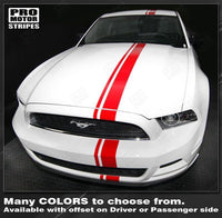2005 2006 2007 2008 2009 2013 2014 2015 2016 2017 Ford Mustang hood  trunk  bumper  roof Decals Stripes 122551586571-1