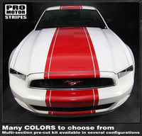 2005 2006 2007 2008 2009 2013 2014 2015 2016 2017 Ford Mustang hood  trunk  bumper  roof Decals Stripes 132266780648-3