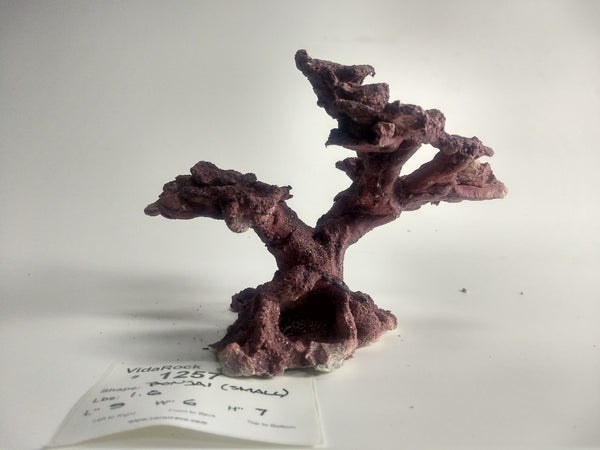 VidaRock Small Bonsai  1257