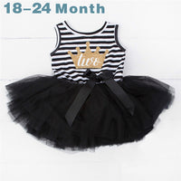 Baby Girl 2nd Birthday Tutu Dress