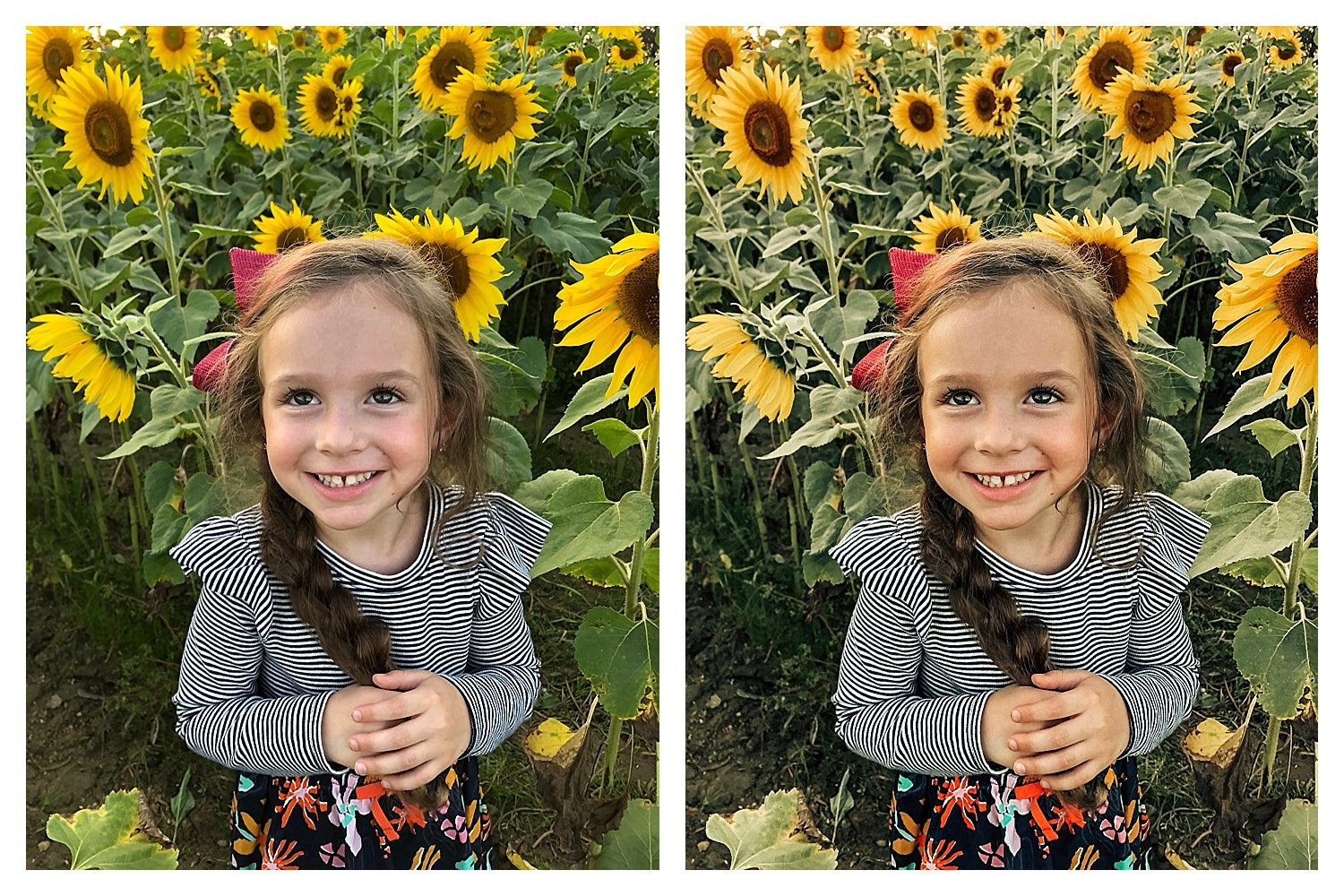 Kylee Ann Lightroom Mobile Preset Pack for iPhone and Android Photos